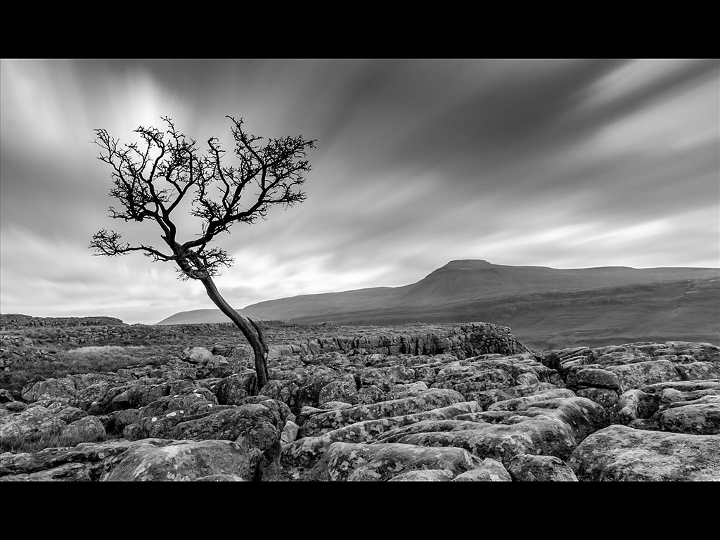 Barren Landscape (c) Charlie Gott [Highly Commended]