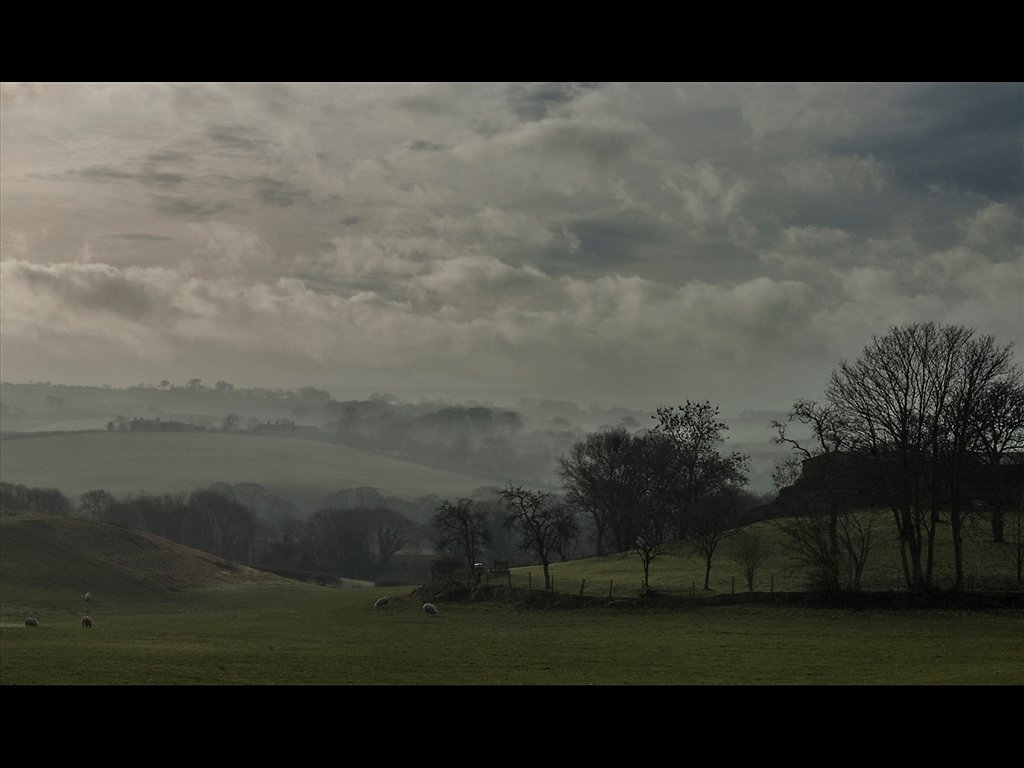 Mist in the Valley (c) Steve Croft [Highly Commended]