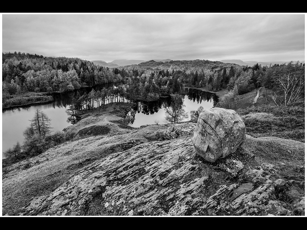Above Tarn Hows (c) Gary Barton [Commended]