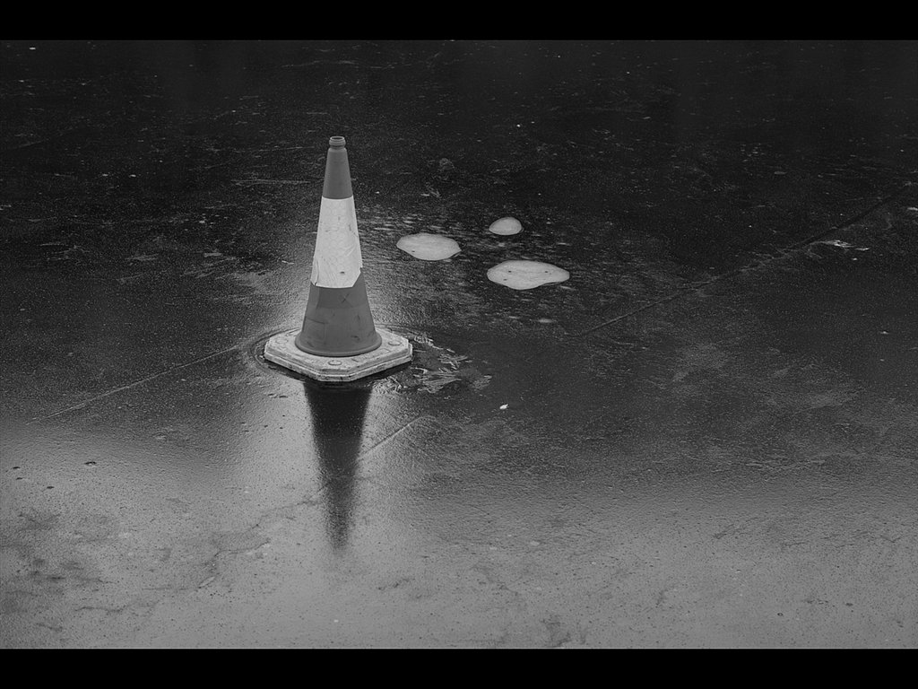 Cone (c) Dave Bleasdale [Highly Commended]