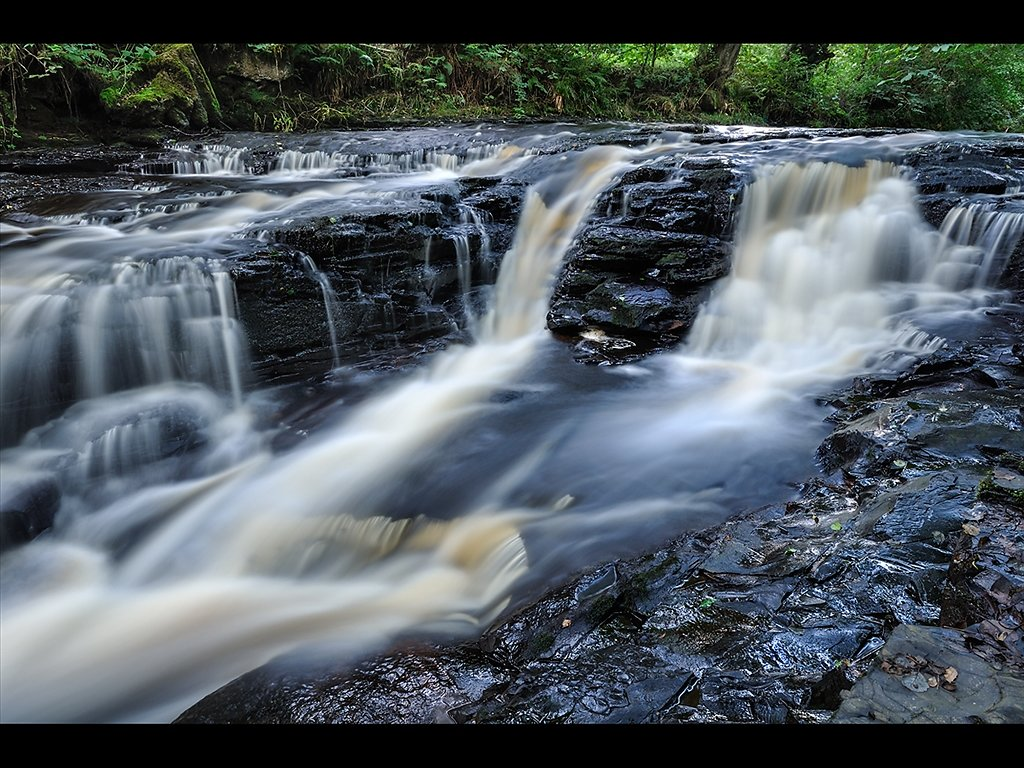 River in Bowland (c) Gary Barton [Highly Commended]