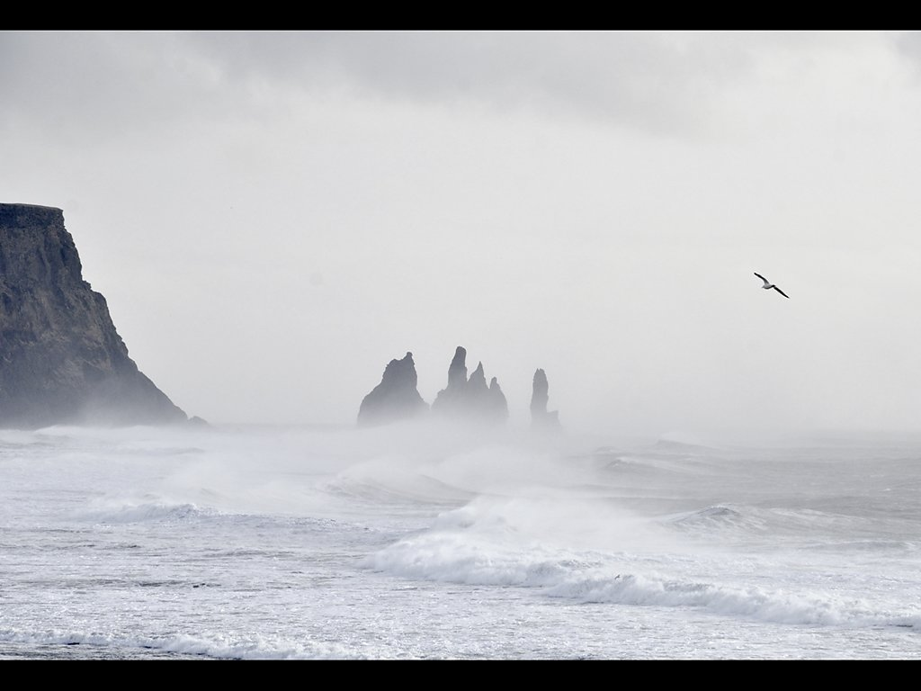 Into The Storm (c) Ruth Wood [Highly Commended]