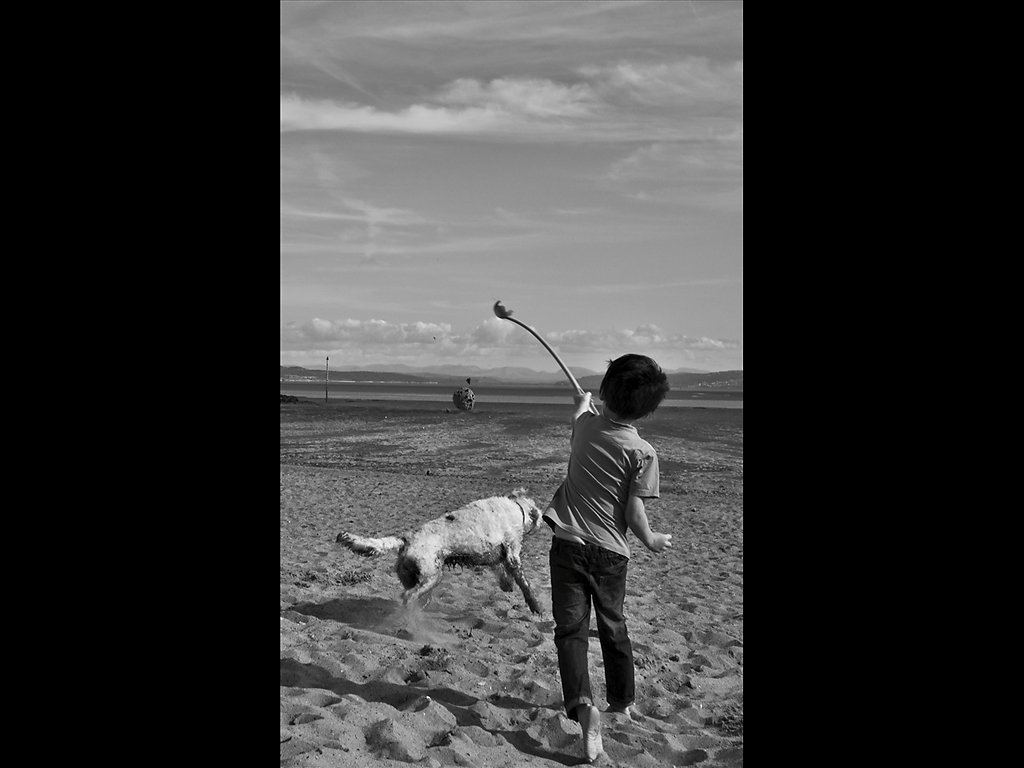 Life of a Boy with Dog (c) John Metcalfe [Commended]