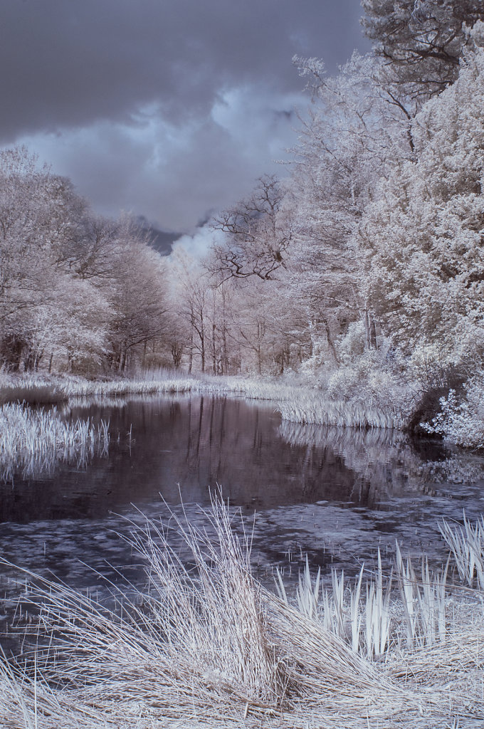 The Pond at Lowther