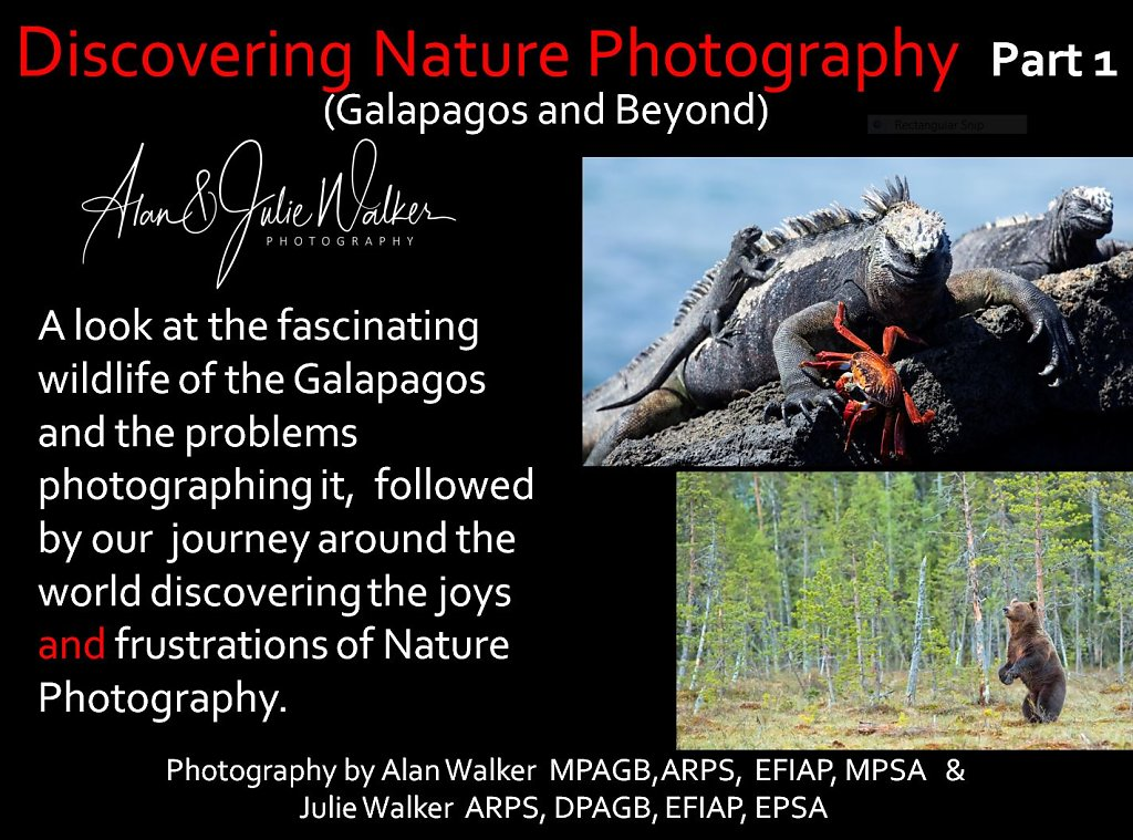 Discovering nature photography