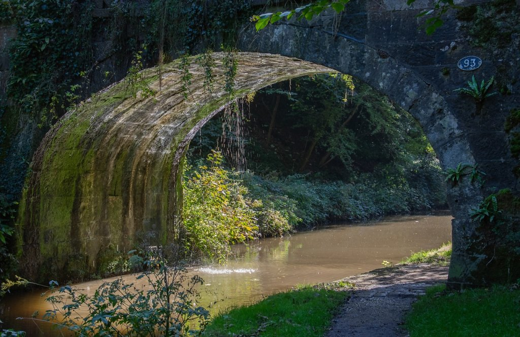 'What's in a bridge 3' Copyright (C) Colin Rogers 2019