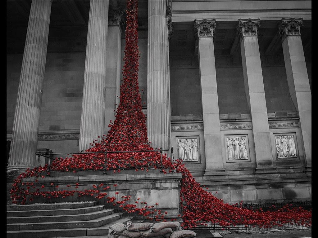 The weeping window (c) Ruth Lochrie [Commended]