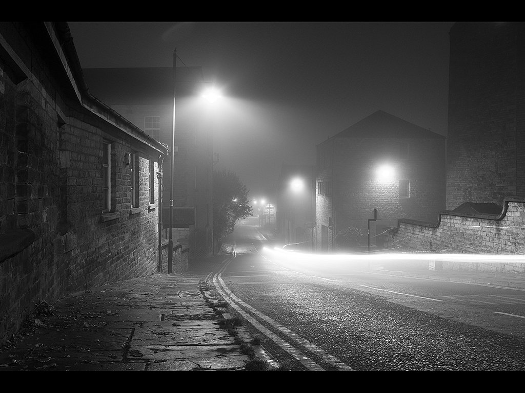 Foggy Trails (c) Tina Cordukes [Highly Commended]
